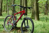 Mountainbike — Stock Photo