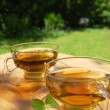 Cup tea in the garden — ストック写真