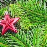 Christmas still life — Stock Photo #3028589