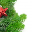 Green fir for christmas — Stock Photo #3042002