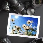 Camera still life — Stock Photo #3043352