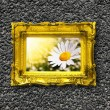 Flowers and image frame on wall — Stock Photo #3043364