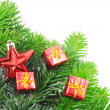 Green fir for christmas — Stock Photo