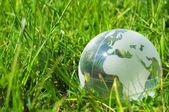 Glass globe or earth in grass — Stock Photo