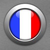 France button — Zdjęcie stockowe