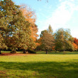 Fall in the park with green trees under blue sky — Stock Photo
