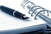 Business organizer and pen — Stock Photo
