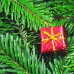 Christmas still life — Stock Photo #3305392