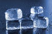 Ice — Stock fotografie