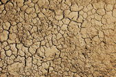 Solo seco — Fotografia Stock