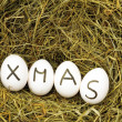 Christmas or xmas — Stock Photo #3353231