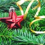 Christmas still life — Stock Photo #3353484
