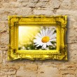 Flowers and image frame on wall — Stock Photo