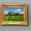 Painting in image frame - Stock Photo