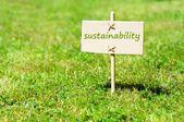 Conceito de sustentabilidade, com a palavra na natureza ainda vida — Fotografia Stock