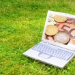 Laptop and money — Stock Photo