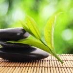 Zen stones — Stock Photo #3484916