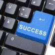 Success button - Stock Photo