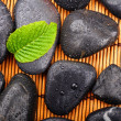 Zen or spa stones — Foto Stock