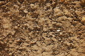 Texture of soil — Stock Photo
