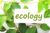 Ekologii — Zdjęcie stockowe