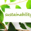 Sustainability — Stock Photo #3702828