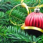 Christmas still life — Stock Photo #3702923