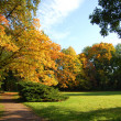 Fall in the park with green trees under blue sky — Stock Photo #3703952