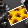 Camera still life - Stock Photo
