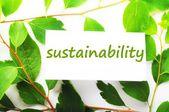 Sustainability — Stock Photo