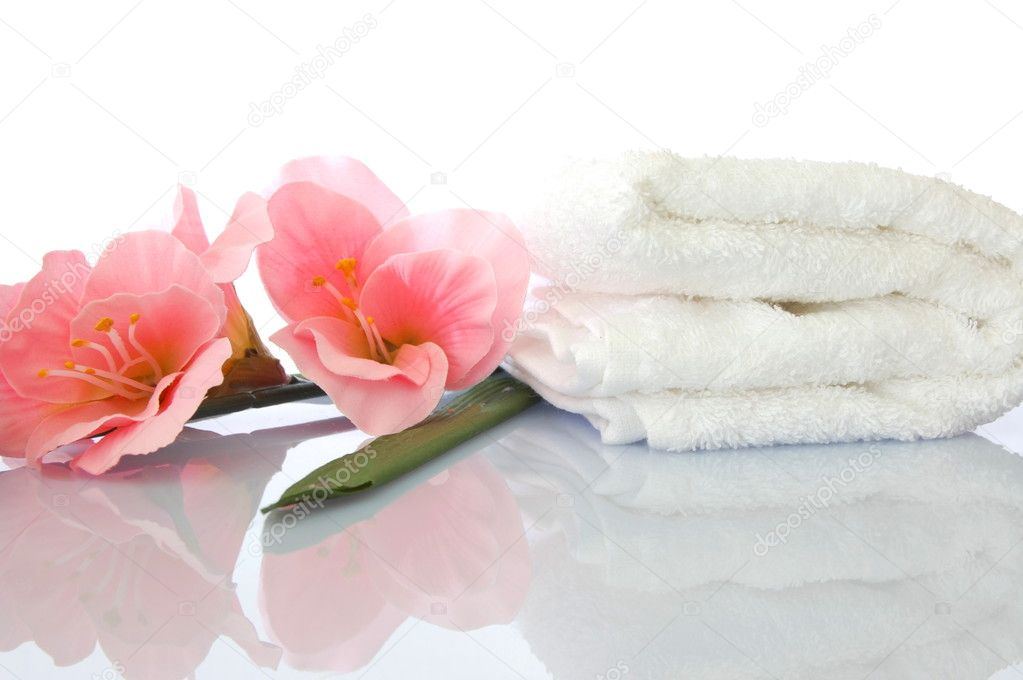 Spa zen and wellness concept isolated on white background — Stock Photo #3874879