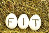 Fit — Stock Photo