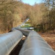 Industrial oil pipeline — Stock Photo