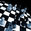 Chess board — Stock Photo #4028433