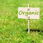 Organic — Stock Photo #4029649