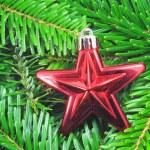 Christmas still life — Stock Photo #4030693