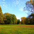 Fall in the park with green trees under blue sky — Stock Photo #4034307