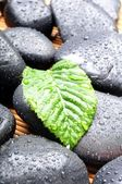 Zen or spa stones — Stock Photo