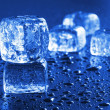 Ice — Stock Photo #4061825