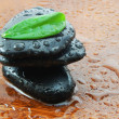 Stock Photo: Zen concept with stones and leaves