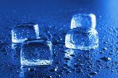 アイス キューブ マクロ — ストック写真