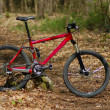 Mountainbike — Stock Photo #4101305