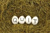 Quit written on eggs in hey or straw — Stock Photo