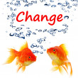 Change - Stock Photo