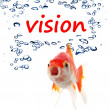 Vision — Stock Photo #4246879