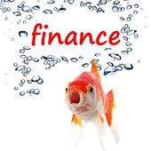 Finance — Stock Photo