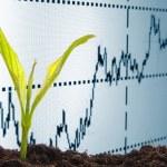 Growing economy — Stock Photo