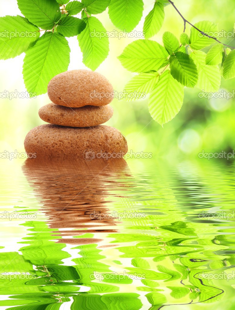 Zen or spa concept with stone leaf and water reflection — Stock Photo #4559877