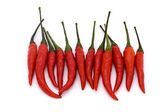 Line of birds eye chillies — Stock Photo