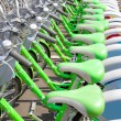 Green Bicycle rent - Stock Photo